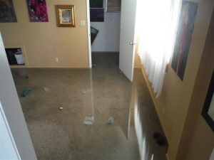 House that Flooded