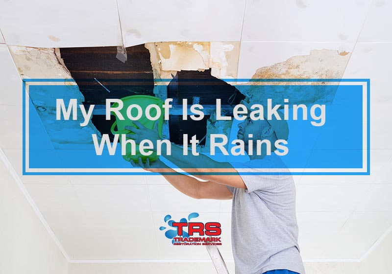 My Roof Is Leaking When It Rains: What Should I Do?